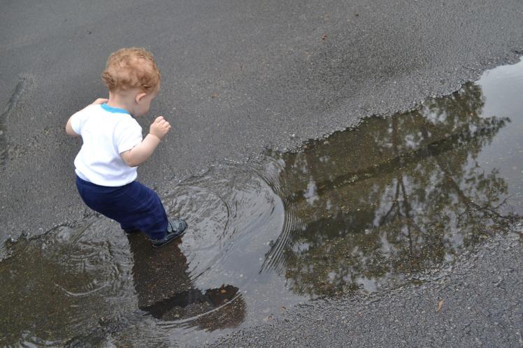 puddles-1497518_1280.jpg